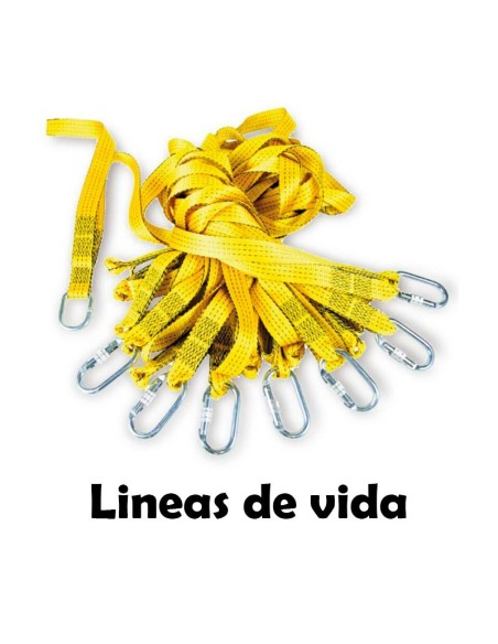 LINEAS DE VIDA